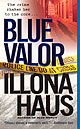 Blue Valor, Detective Kay Delaney